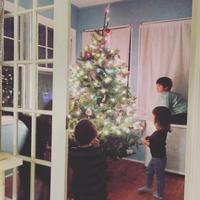 Christmas Tree 2017 - 烏帽子への風