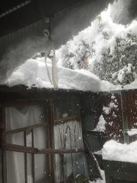 ドカ雪 - ちょんまげブログ
