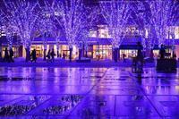 2016年横浜クリスマスイルミネーション - エーデルワイスPhoto