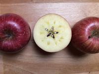 『奇跡のリンゴ』とリンゴ - シンプルライフと日和やの本棚