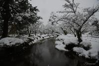 雪降る兼六園 - 今日の空+α2