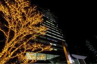 京セラ本社イルミネーション2017 - 花景色-K.W.C. PhotoBlog