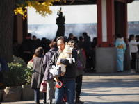 浅草寺境内スナップ - エンジェルの画日記・音楽の散歩道