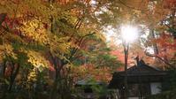 金剛輪寺 - belakangan ini