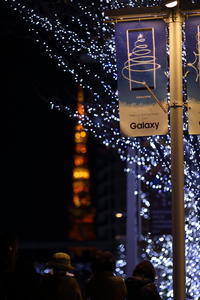 東京タワー - 花は桜木、
