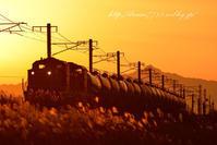 夕暮れ - HIROのフォトアルバム