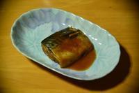 サバの味噌煮 - 「 ボ ♪ ボ ♪ 僕らは釣れない中年団 ♪ 」