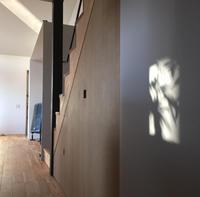 白壁に映る樹木の影 - kukka kukka