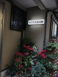 吸い玉 - lesnuit sayuriyamazaki