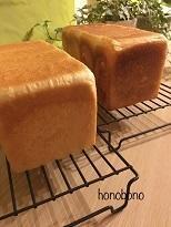 アルタイトの型ものによる焼き色の違い~ご挨拶~ - 天然酵母パン教室  ほーのぼーの