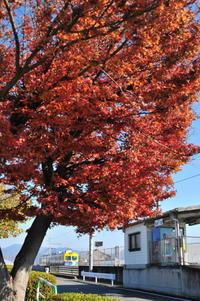駅前の紅葉と上毛電鉄・東新川 - このひとときを楽しもう