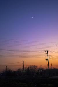久しぶりに綺麗な夕焼けを見た - 一人の読者との対話
