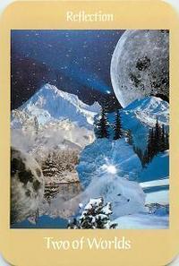 雪の下では… - 自然の力で元気になる