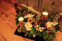 小さな庭のささやかなメリークリスマス - CHIROのお庭しごと