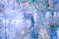 Blue Christmas - IL EST TROP TARD     時は過ぎゆく ...