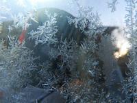 寒い朝に - 写真撮り隊の今日の一枚2