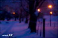 「アウトフォーカス」 - 藍の郷