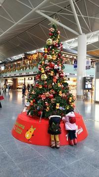 中部国際空港 - ウィズアンドウィズ スタッフブログ