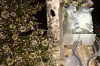 ✿Merry Christmas(GINZA) - ✿happiness✿