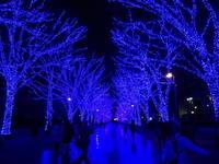 イルミネーションツアー渋谷「青の洞窟」~恵比寿ガーデンプレイスのバカラのシャンデリア♪ - おいしい日々