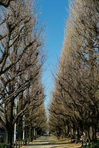 "TOKYO生誕節奇譚 - 飽商909の""ナローな""時計部屋"