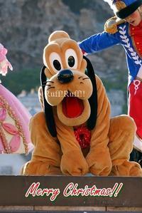 [写真のみ]パーフェクトクリスマス - Ruff!Ruff!! -Pluto☆Love-
