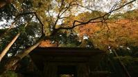 百済寺 - belakangan ini