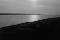 淀川河口 - のっとこ