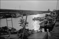 港萌え - のっとこ