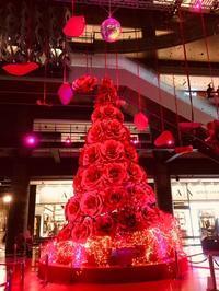 グランフロント大阪 クリスマス - 行く当てのない言葉