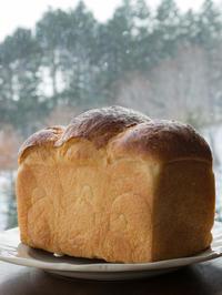 麹とごはんの酵母で山食と自由すぎるパン - bouleな日々