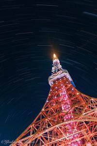 ダイヤモンドヴェールツリーと星の光跡 - 写真ブログ「四季の詩」