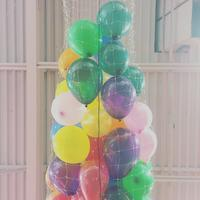 Birthday Party - 烏帽子への風
