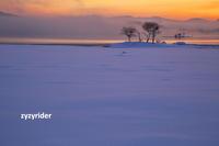 うすピンクの雪の彩り(その2) - ジージーライダーの自然彩彩