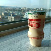 李京玉と巡る韓国済州満喫の旅⑩第2班ツアー3日目 - koe&Kyo 日々燦々