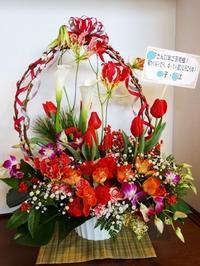 年の暮れに届いた花たち - ゆうゆうタイム