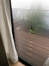 『その後のポリカ製簡易二重窓のその後・・』 - NabeQuest(nabe探求)