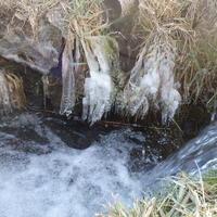 年の瀬・凍る - 冬青窯八ヶ岳便り