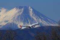 横田基地と富士山 - 飛行機&鉄道写真館