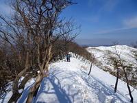 雪の綿向山 (1,110M)  下山 編 - 風の便り