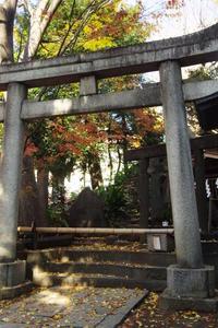 晩秋のスサノオ神社 - はーとらんど写真感
