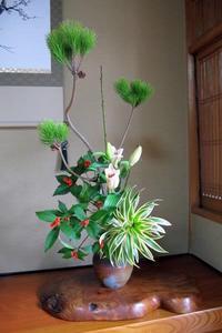 謹賀新年 - リリ子の一坪ガーデン