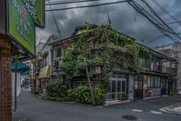 記憶の残像 2017年花の東京 -65東京都足立区北千住 - ある日ある時 拡大版