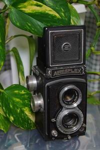 アイレスフレックス - 写真を撮ってもいいですか?