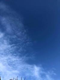 青い、、、✨ - fu-de-sign*文字日和*