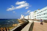 17.12.30 最高の天気の中 - 沖縄本島 島んちゅガイドの『ダイビング日誌』