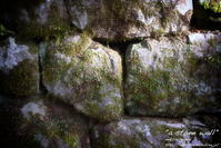 """a stone wall"" - ~まきち写真工房~"