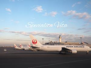 JALグローバル会員への軌跡 - Specialita VitaⅡ