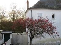よいお年を♪ - フランス Bons vivants des marais