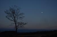 12月31日 今年最後の月 - 光画日記